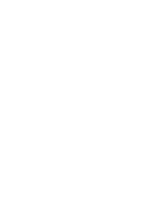Texas Film Commission Logo