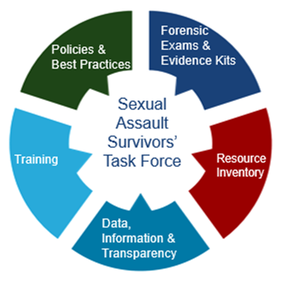 Circular graphic representing the five areas of focus for the Sexual Assault Survivors' Task Force that include Policies and Best Practices, Forensic Exams and Evidence Kits, Resources and Inventory, Data Information and Transparency, and Training